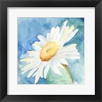 Framed Daisy Sunshine I