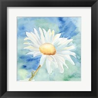 Framed Daisy Sunshine II