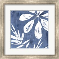 Framed Tropical Indigo Impressions II