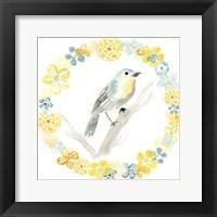 Framed Solo Songbird IV