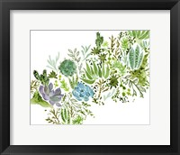 Framed Succulent Field I
