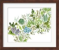 Framed Succulent Field I