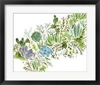 Succulent Field I Framed Print