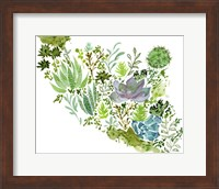 Framed Succulent Field II