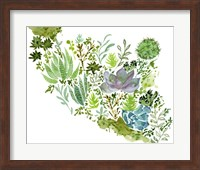 Framed Succulent Field II