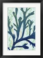Framed Sea Forest II