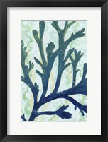 Framed Sea Forest II