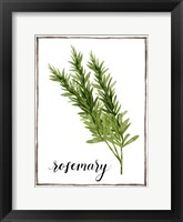 Framed Watercolor Herbs V