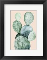 Framed Cactus on Coral II
