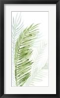 Framed Faint Palms II
