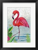 Framed Vivid Flamingo I