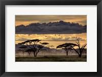 Framed Good Evening Tanazania