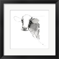 Cow II Dark Square Framed Print
