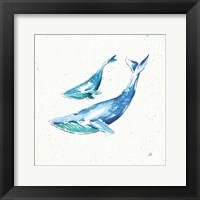 Maritime VIII Framed Print