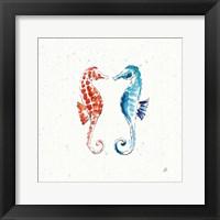 Maritime IX Framed Print