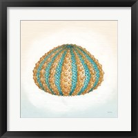 Framed Boardwalk Urchin