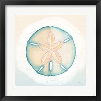 Boardwalk Sand Dollar Framed Print