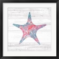 Framed Ocean Life IV
