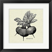 Framed Linen Vegetable BW Sketch Beets