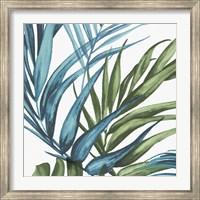 Framed Palm Leaves II