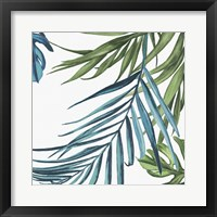 Framed Palm Leaves III