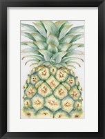 Framed Fruit IV