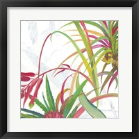Framed Tropical II
