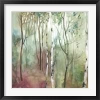 Framed Birch in the Fog I