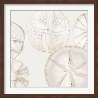 Framed Sea Patterns I
