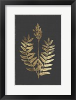 Framed Botanical Gold on Black III