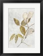 Framed Botanical Gold on White III