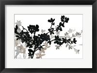 Framed Apple Bloom I