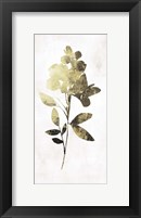Framed Gold Botanical I