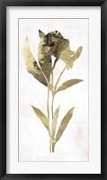 Framed Gold Botanical III