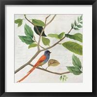 Framed Singing Bird II