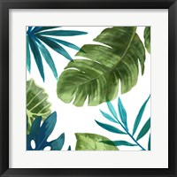 Framed Tropical Leaves II