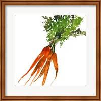 Framed Carrot