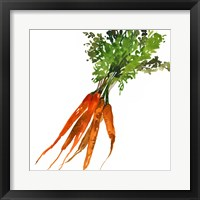 Framed Carrot