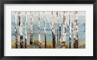Framed Birch Reflection