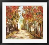 Framed Sunny Path