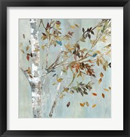Birch with Leaves I Framed Print