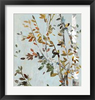 Birch with Leaves II Framed Print