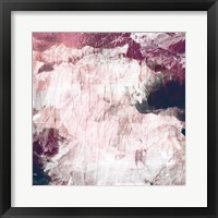 Framed Abstract Roses