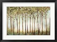 Framed Riverside Forest
