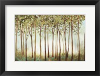 Framed Riverside Forest