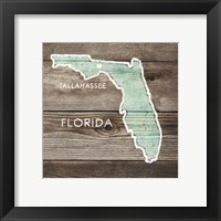 Framed Florida Rustic Map