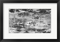 Framed Black and White Abstract V