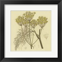 Framed Yellow Weeds
