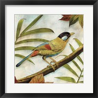 Framed Jungle Bird I