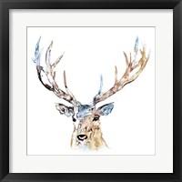 Framed Watercolour Reindeer